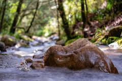 在山沟的大岩石 库存照片