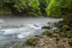 在山河上的早晨雾在绿色森林中间 免版税库存图片