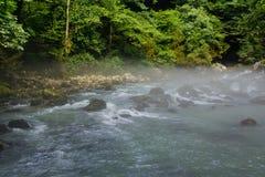 在山河上的早晨雾在绿色森林中间 库存图片