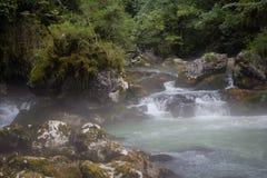 在山河上的早晨雾在绿色森林,石头中间报道了w 免版税库存照片