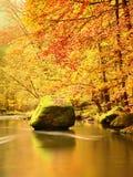 在山河上的秋天五颜六色的森林 水在叶子树下 图库摄影