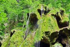 在山河的瀑布 免版税库存图片