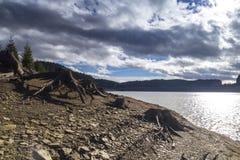 在山湖旁边的老树桩 库存照片