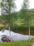 在山湖的夏天 免版税图库摄影