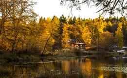 在山湖附近的房子 免版税库存图片