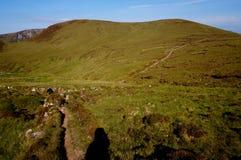 在山爱尔兰的道路 库存图片