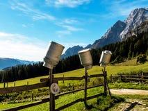 在山牧场地的牛奶罐头 免版税库存照片
