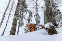 在山的一个森林小屋在冬天暴风雪有雾的风景 库存照片