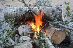 在山的一个营火 免版税库存照片