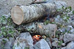 在山的一个营火 免版税库存图片