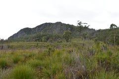 在山的一个领域 库存照片