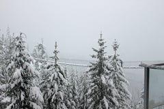 在山的一座积雪的吊桥 图库摄影