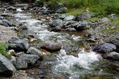 在山的一条小河 免版税库存照片