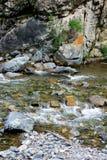 在山的一条小河 免版税图库摄影