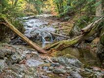 在山的一点瀑布 免版税库存图片