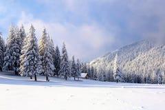 在山的上流在用那里雪盖的森林是站立与在草坪的篱芭的偏僻的老木小屋 图库摄影