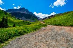 在山的上面的路 免版税库存图片