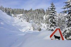 在山的下雪的路 免版税库存图片