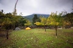 在山的两个帐篷 免版税库存图片