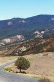 在山的乡下公路 库存图片