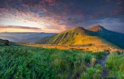 在山的五颜六色的夏天风景。 免版税图库摄影