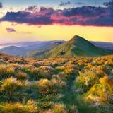 在山的五颜六色的夏天风景。 免版税库存照片