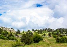 在山的五颜六色的夏天风景,在与白色云彩的一天空蔚蓝下 库存图片