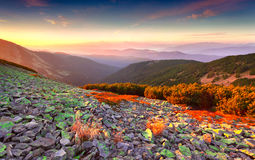在山的五颜六色的秋天日出 库存照片