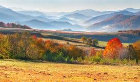 在山的五颜六色的秋天早晨 库存图片