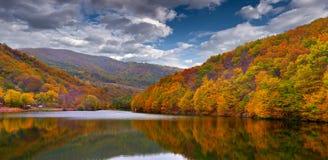 在山的五颜六色的秋天横向 免版税库存照片
