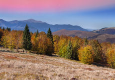 在山的五颜六色的秋天风景。 免版税库存照片