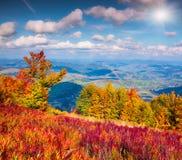 在山的五颜六色的秋天风景 库存照片