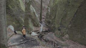 在山的人步行 股票录像