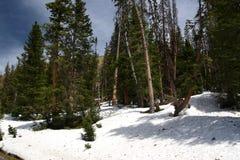 在山的冬天场面 免版税图库摄影