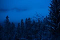 在山的冬天夜 库存照片
