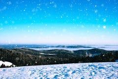 在山的冬天横向 免版税图库摄影