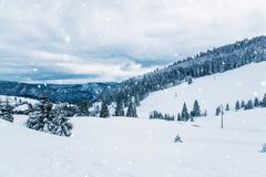 在山的冬天横向 免版税库存照片