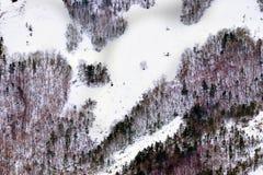 在山的冬天结构树 库存照片