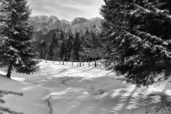 在山的冬天 库存照片