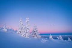 在山的冷淡的早晨 免版税库存照片