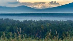 在山的剧烈的日出与用雾盖的前景的厚实的常青森林,阿尔泰山,哈萨克斯坦 库存图片