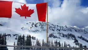在山的加拿大旗子 免版税库存图片
