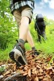 在山的北欧人走的腿 免版税库存照片