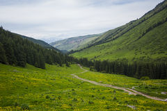 在山的土路 夏天山横向 在小山下的小径通过山土坎的森林对谷 免版税库存照片