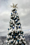 在山的圣诞树 库存照片