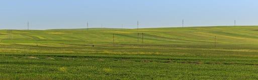 在山的培养的领域Gobustan (阿塞拜疆) 免版税库存照片