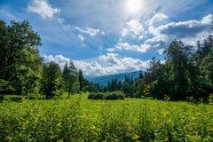 在山的夏天午间 免版税库存照片