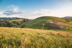 在山的夏天风景在日落 免版税库存照片