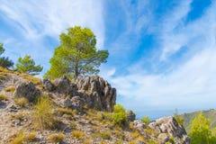 在山的夏天风景,西班牙 库存图片