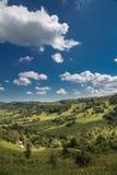 在山的夏天风景 免版税库存照片